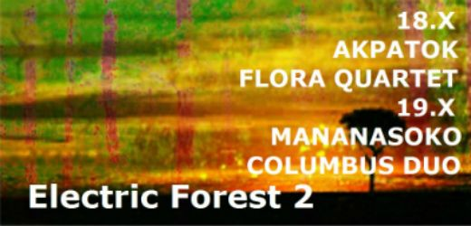 Columbus na Electric Forest II